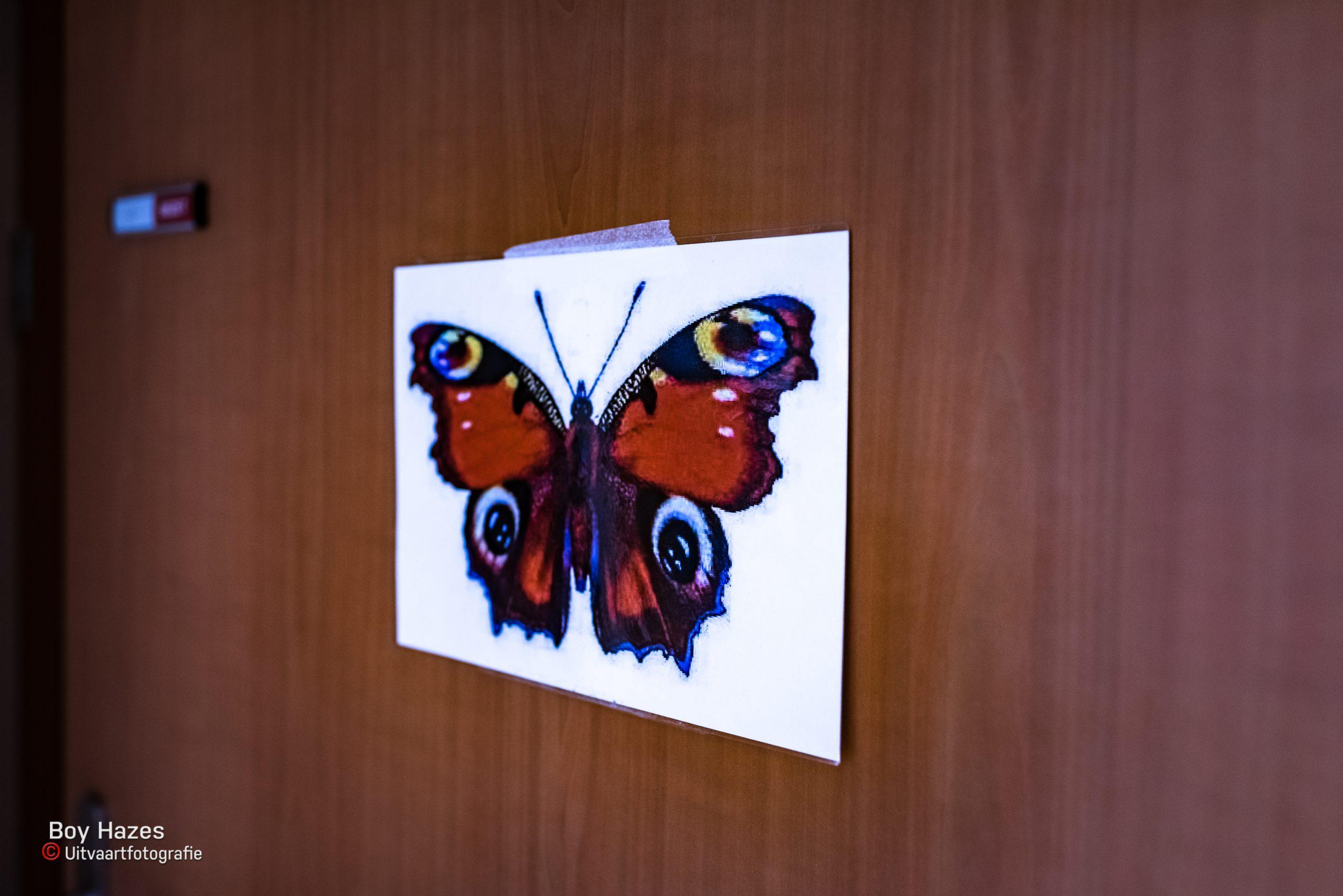 Boy Hazes uitvaartfotografie Vlinder Kindjes